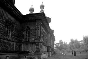 photography, jessica desouza, dahlia , visionary relics visionary relics street photography spotlighsiren